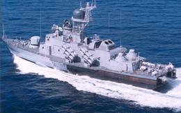 Quốc gia nào đang sở hữu nhiều tàu tên lửa Tarantul/Molniya nhất?
