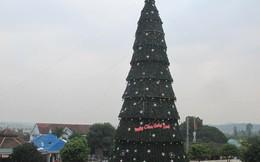 """Ngắm cây thông Noel """"siêu khủng"""" bằng tòa nhà 10 tầng ở xứ Nghệ"""