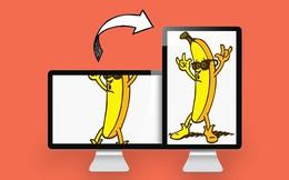 """""""Xoay dọc"""" màn hình, xu hướng mới của người dùng internet"""