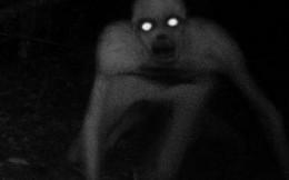 Top những sinh vật bí ẩn cực kỳ đáng sợ
