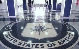 Tình báo phương Tây mải lo Nga, bỏ quên IS