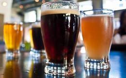 10 điều bất ngờ về bia không phải ai cũng biết