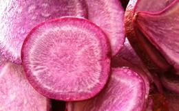 """Vì sao khoai lang được dân gian ưu ái gọi là """"sâm nam""""?"""