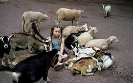 Bộ ảnh tuyệt đẹp ghi lại khoảnh khắc bé gái lớn lên bên các loài vật