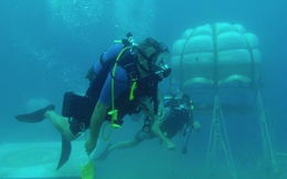 Ngỡ ngàng với ý tưởng trồng cây dưới biển
