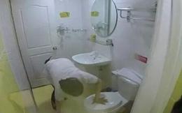 """Khách sạn """"xịn"""" phục vụ khăn tắm cho khách sau khi... lau bồn cầu"""