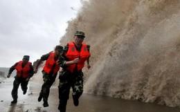 Những cơn bão có sức hủy diệt lớn nhất mọi thời đại