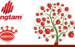 Hái quả ngọt từ Kinh Đô, gạch Đồng Tâm bắt đầu thoái vốn