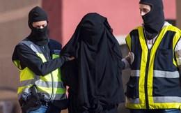 Áo bắt hai nghi can liên quan đến loạt tấn công khủng bố Paris