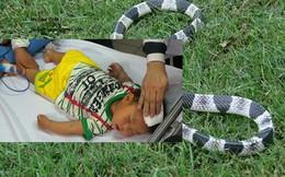 Bộ trưởng Tiến thăm bé 2 tuổi bị rắn cực độc cắn vào ngón tay