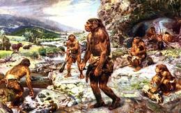 10.000 năm trước, con người biết cách nấu chín đồ ăn và điều đó đã giúp chúng ta tiến hóa cao hơn bất cứ loài động vật nào khác