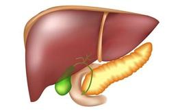 Nôn ra dịch màu xanh, hãy cảnh giác căn bệnh liên quan đến gan