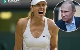 Tổng thống Putin ra mặt, Maria Sharapova không lo án phạt nặng?