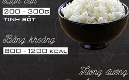 Đây chính là lượng cơm, rau, thịt bạn cần ăn mỗi ngày
