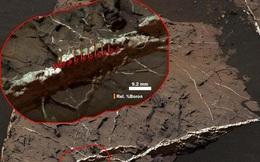 Bằng chứng Sao Hỏa từng có sự sống trong hàng trăm triệu năm