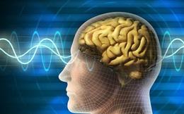 Cảnh báo 5 nguyên nhân hàng đầu gây u não ai cũng phải biết