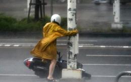 24h qua ảnh: Người đi đường ôm cột đèn để tránh bão ở Đài Loan