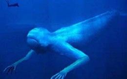 """Những bí mật """"khủng khiếp"""" nhất dưới đáy đại dương"""
