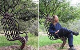 """Khám phá khu vườn """"trồng bàn ghế"""" duy nhất trên thế giới"""
