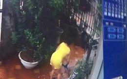 Xem camera, chủ nhà ở Bắc Ninh tá hỏa phát hiện người giúp việc giết chết 2 chú chó cưng