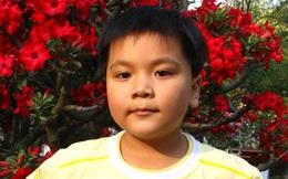 Bạn làm gì khi 11 tuổi? Còn cậu bé thần đồng này đã giành 5 HCV toán quốc tế