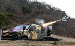 Việt Nam có ý định đặt mua tên lửa chống tăng Spike NLOS của Israel