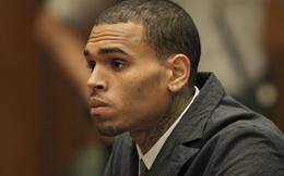 Chris Brown lại bị kiện vì tội hành hung