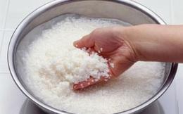 4 sai lầm khi chọn gạo và nấu cơm khiến bạn dễ mắc bệnh