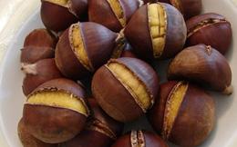 Những loại hạt ăn Tết vừa ngon vừa tốt cho sức khỏe