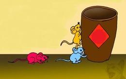 """Câu chuyện kiếm ăn của 3 con chuột và """"bài học giá ngàn vàng"""" cho con người chúng ta"""