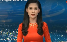 """Clip VTV đưa tin về buổi làm việc với Đắk Lắk vụ """"dàn dựng phóng sự phá rừng"""""""