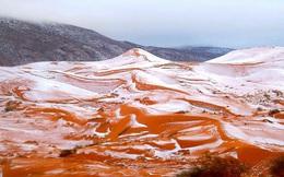 Lần thứ 2 trong lịch sử, sa mạc Sahara có tuyết rơi!