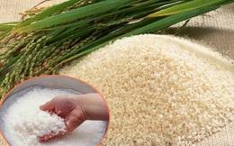 """Mách bạn cách chọn gạo sạch giữa cơn bão """"thực phẩm bẩn"""""""