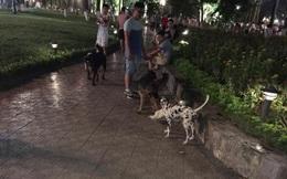 """""""Việc đem chó đi dạo là điều hoàn toàn bình thường và văn minh"""""""