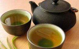 Loại trà vừa thanh lọc gan, vừa giết chết ký sinh trùng có hại bạn có thể tự làm