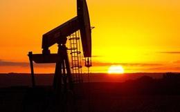Giá dầu sẽ xuống 20 USD vì nhân dân tệ lao dốc