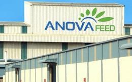 Một công ty thức ăn chăn nuôi Việt vừa nhận 15 triệu USD từ IFC