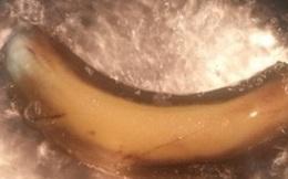 Đun sôi một trái chuối trong vòng 10 phút bạn sẽ chữa được bệnh mất ngủ