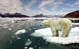 """Bỏ qua dữ liệu quan trọng, đến bây giờ khoa học mới biết Trái đất sắp đạt đến độ nóng """"không thể phục hồi"""""""