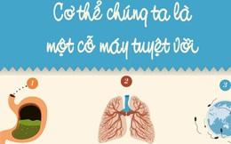 Đây là lý do khiến bạn nên trân trọng cơ thể của mình hơn
