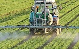 Đại gia giàu nhất Việt Nam lần lượt dắt nhau làm nông nghiệp