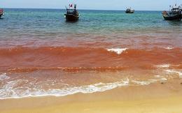 Vệt nước màu nâu đỏ vừa xuất hiện ở Quảng Bình rất bất thường