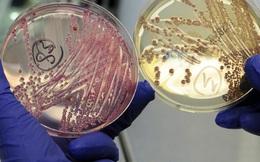 Khủng hoảng kháng sinh được Liên Hợp Quốc xếp ngang hàng đại dịch AIDS và Ebola, có thể khiến 10 triệu người mất mạng
