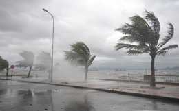 Bão Nock-ten có sức gió gần tâm bão giật trên cấp 17