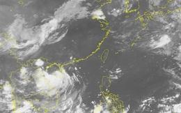 Tin bão số 1 mới nhất 27/7: Đêm nay, bão đổ bộ vào Quảng Ninh-Nam Định