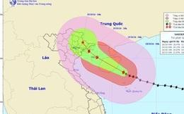 Chuyển 14 chuyến bay đến và đi tại Hải Phòng sang Hà Nội tránh bão