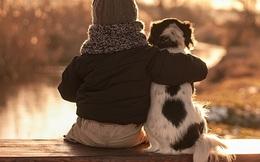 Tại sao chó luôn luôn là người bạn thân nhất của con người?