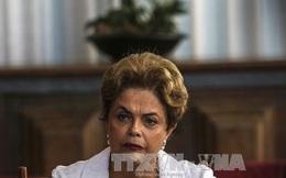Tòa Tối cao Brazil bác đề nghị hoãn điều trần của Tổng thống Rousseff