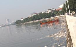 """GS Nguyễn Hữu Ninh:  """"Cá chết ở Hồ Tây là một lời cảnh báo rõ ràng"""""""