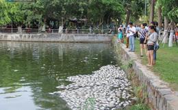 Bí thư Xuân Anh: Quận số 2 Đà Nẵng nhưng có cái nhà hàng nào ngon không?